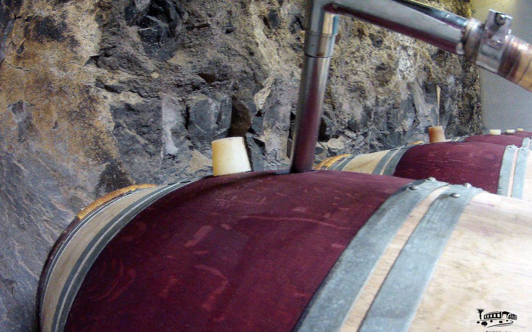Trasiego de nuestro vino a barrica de roble