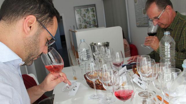 Un total de 155 vinos compiten por el Premio al Mejor Vino de Canarias 2017