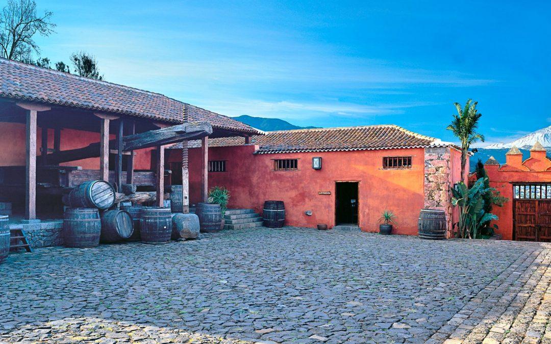 Encuentra nuestro Malvasía aromática en la próxima degustación de La Casa del Vino Tenerife